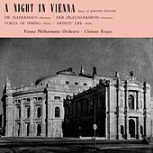 A Night In Vienna by Vienna Philharmonic Orchestra
