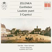 Zelenka: Confitebor, Laudate pueri & 3 Capricci by Various Artists