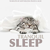 Tranquil Sleep by Various Artists