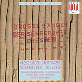 Beethoven, von Weber, Bizet & Strauss: Opera Arias (Great Singers) by Various Artists