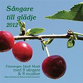 Sangare Till Gladje 2012 by Various Artists