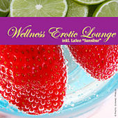 Wellness Erotic Lounge by Various Artists
