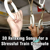 30 Relaxing Songs for a Stressful Train Commute by Pianissimo Brothers