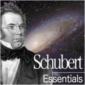Schubert Essentials by Various Artists