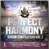 Perfect Harmony Riddim Vol 1 by Various Artists
