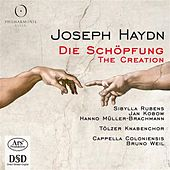 Haydn: Die Schöpfung (The Creation) by Sibylla Rubens