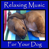 Relaxing Music for Your Dog by Pianissimo Brothers
