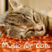 Music for Cats by Pianissimo Brothers