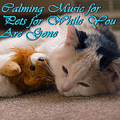 Calming Music for Pets for While You Are Gone by Pianissimo Brothers