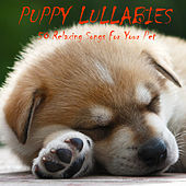 Puppy Lullabies: 50 Relaxing Songs for Your Pet by Pianissimo Brothers