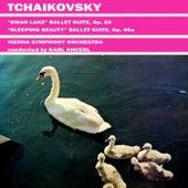 Tchaikovsky Swan Lake by Vienna Symphony Orchestra