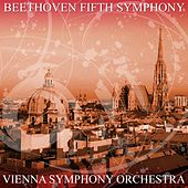 Beethoven Fifth Symphony by Vienna Symphony Orchestra
