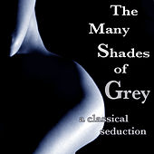 The Many Shades Of Grey by Various Artists