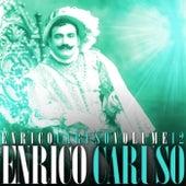 Enrico Caruso Volume 12 by Enrico Caruso