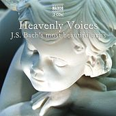 Heavenly Voices - Bach, J.S.: Arias by Various Artists