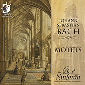 Bach: Motets by The Bach Sinfonia