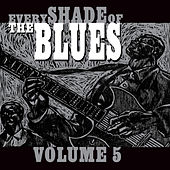 Every Shade of the Blues - Vol. 5 von Various Artists
