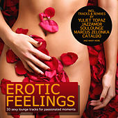 Erotic Feelings - 30 Sexy Lounge Tracks for Passionated Moments by Various Artists