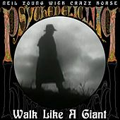 Walk Like A Giant by Neil Young