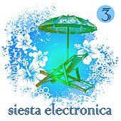 Siesta Electronica Vol. 3 by Various Artists