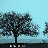 Tranquility 002 by Various Artists