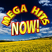 Mega Gay Hits Now! by Future Hit Makers