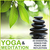 Yoga & Meditation Music: 40 Essential Songs for Peace and Reflection by Pianissimo Brothers