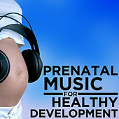 Prenatal Music for Healthy Development by Pianissimo Brothers