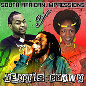 South African Impressions by Dennis Brown