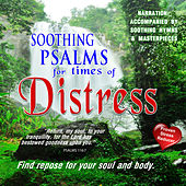 Psalms For Times Of Distress by David & The High Spirit