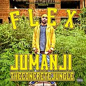 Jumanji -the Concrete Jungle by Flex