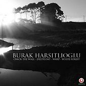 Crack The Wall / Deepfloat / Warp / White Forest - Single by Burak Harsitlioglu