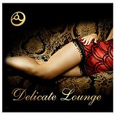 Delicate Lounge by Various Artists