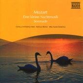 Mozart: Eine Kleine Nachtmusik / Serenata Notturna / Divertimento by Capella Istropolitana