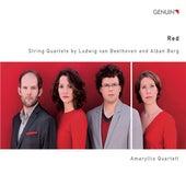 Red by Amaryllis Quartett