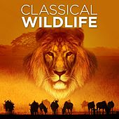 Classical Wildlife by Various Artists