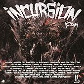 Incursion Riddim by Various Artists