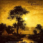 Pachelbel: Canon - Vivaldi: The Four Seasons & Guitar Concerto - Bach: Air On the G String & Violin by Various Artists