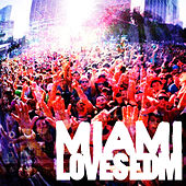 Miami Loves EDM by Various Artists