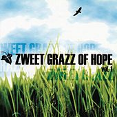 Zweet Grazz Of Hope Vol. 1 by Chiq Toxiq