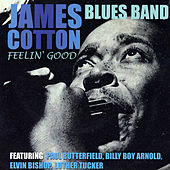 Feelin' Good by James Cotton