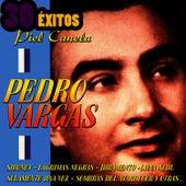 Piel Canela by Pedro Vargas
