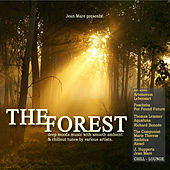 The Forest Chill Lounge (Deep Ambient Chillout Lounge Electronic Downbeat Moods) by Various Artists