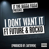 I dont want it feat. Future and Rocko by JT the Bigga Figga