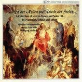 Angst der Hellen und Friede der Seelen by Various Artists