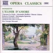 L'Elisir D'Amore by Gaetano Donizetti