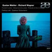 Mahler & Wagner: Rückert-Lieder, Wesendonck-Lieder, Prélude & Mort d'Isolde by Various Artists