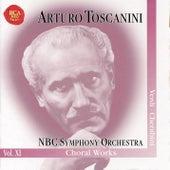 Arturo Toscanini Vol. XI by Arturo Toscanini