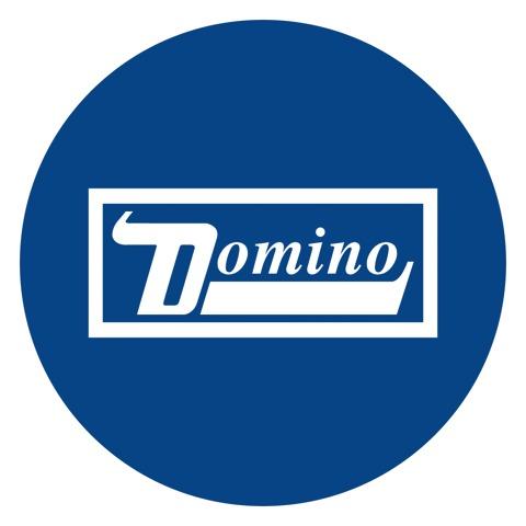 Domino USA
