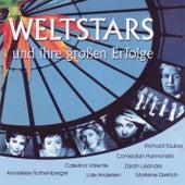 Weltstars Und Ihren Grossen Erfolge von Various Artists
